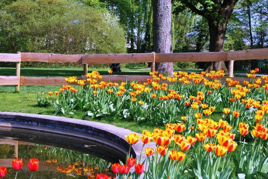 Verkehrssicherungspflicht Am Gartenteich Gartenteich