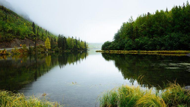 Unterschied See Teich